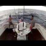 【油断大敵!】獲物の反撃に釣り人仰天!!海に飛び込む羽目に・・・www